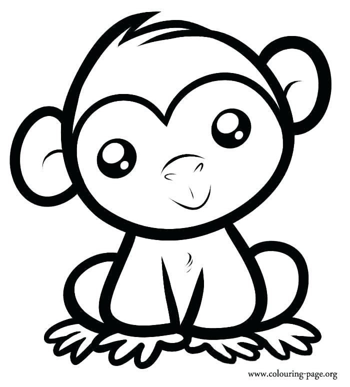 700x774 Elegant Coloring Pages Of Monkey New Best Colouring Images