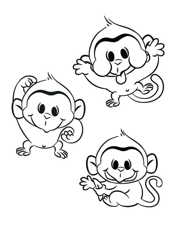 600x750 Monkey Coloring Pages Printable Monkey Coloring Pictures Monkey