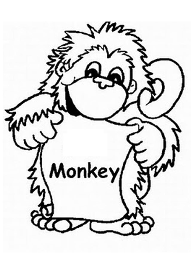 650x920 Monkey Template