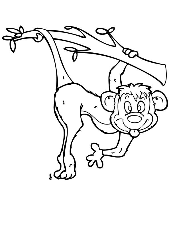 600x800 Monkey Make Funny Monkey Face Coloring Page