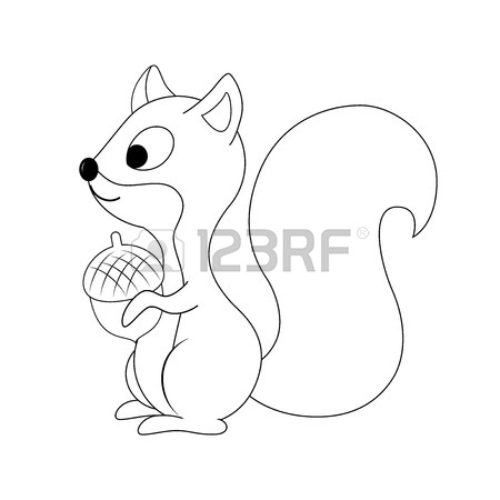 Funny Squirrel Drawing