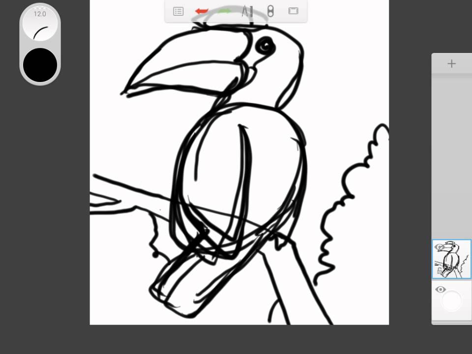 960x720 How To Draw Animal Hornbill