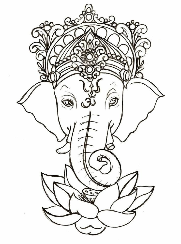 736x992 Drawn Asian Elephant Ganesh