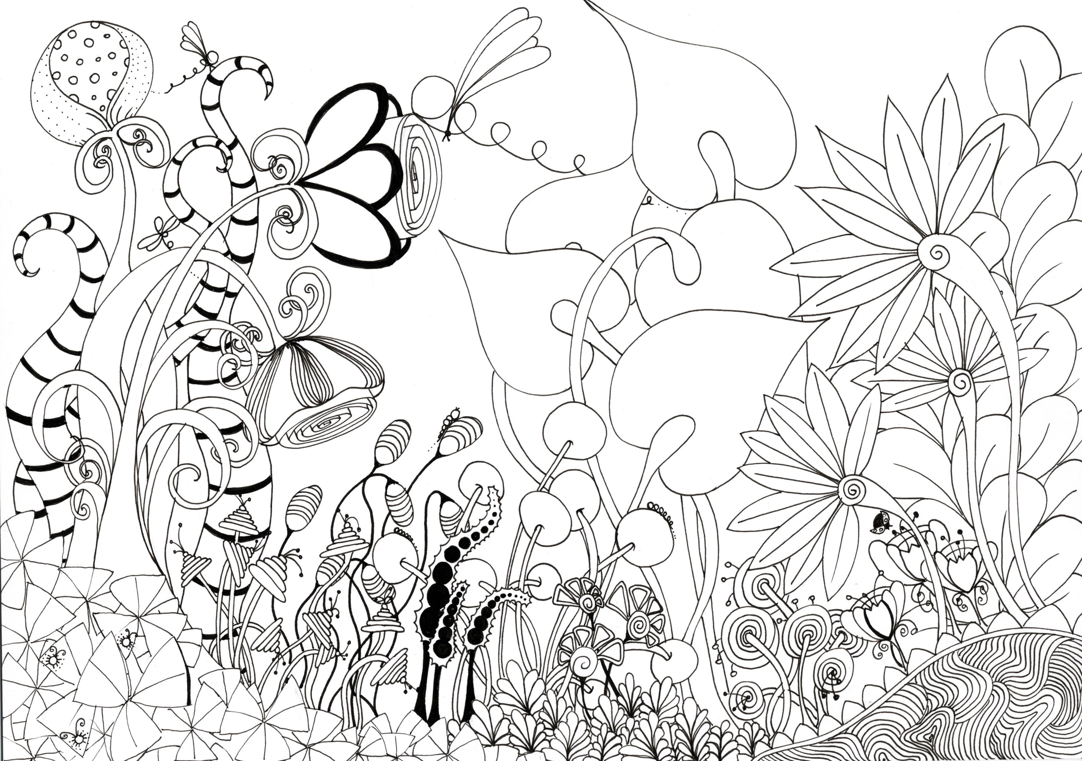 3543x2491 Best Flower Garden Drawing For With Home ~ Garden Trends