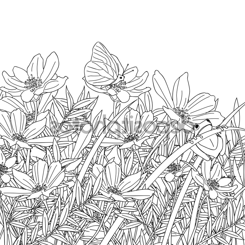 1024x1024 Pencil Drawing Of Flower Garden Sketch Of Flower Garden