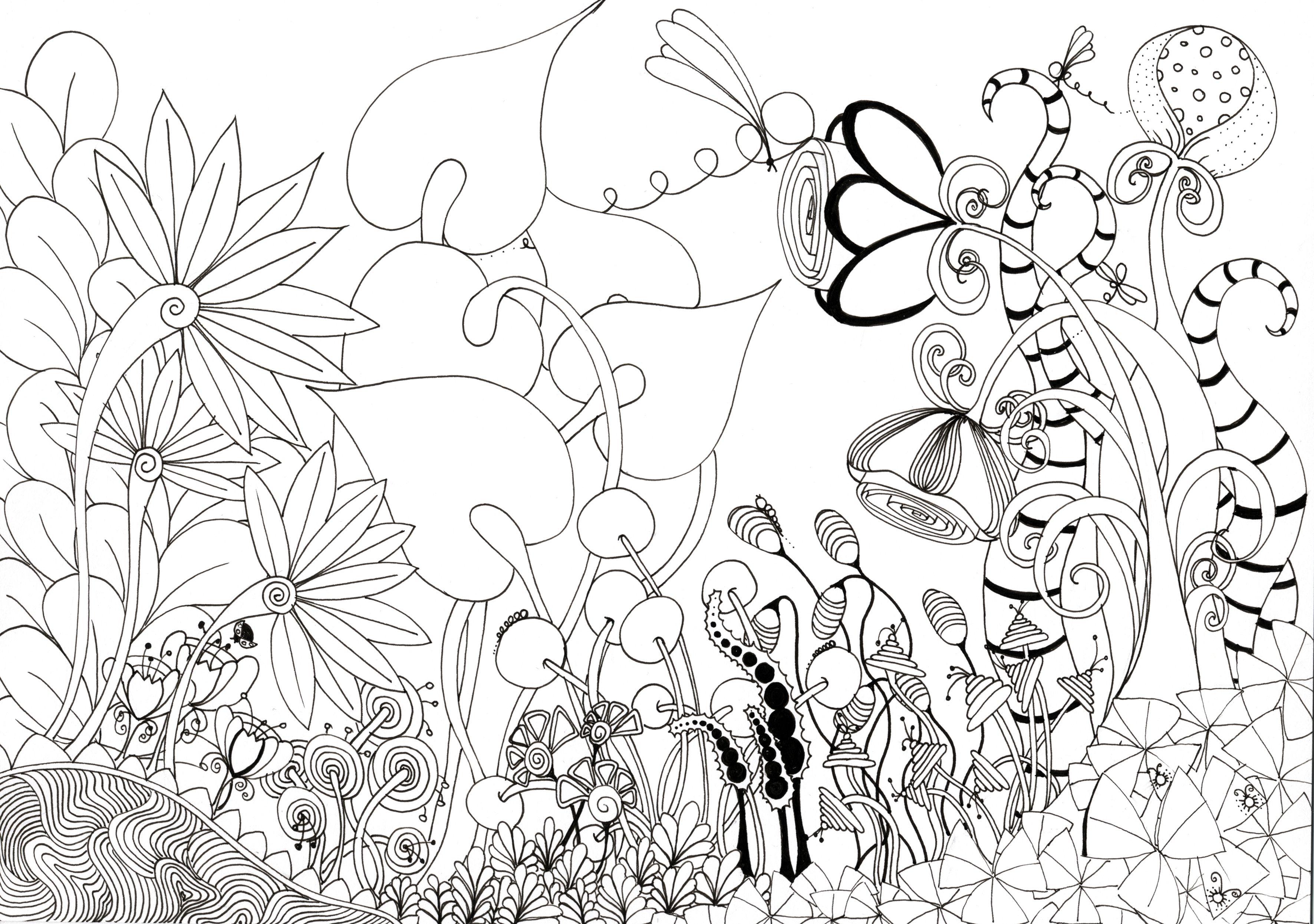 3543x2491 Splendid Gallery Garden Flowers Photos In Pencil Drawing