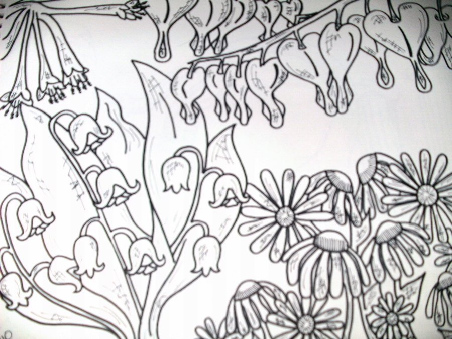 900x675 Cool Flower Garden Drawings Images