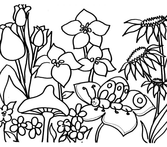 Garden Drawing For Kids At Getdrawings Com Free For Personal Use