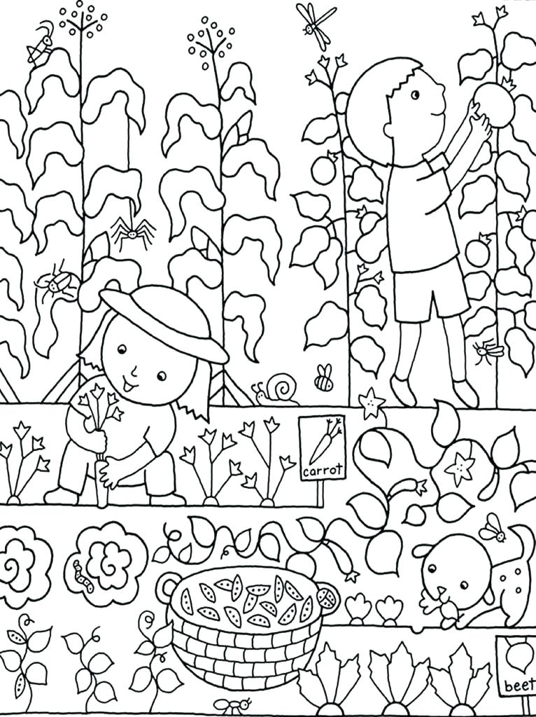 766x1024 Flower Garden Coloring Page Daisy Flower Garden Coloring Sheets
