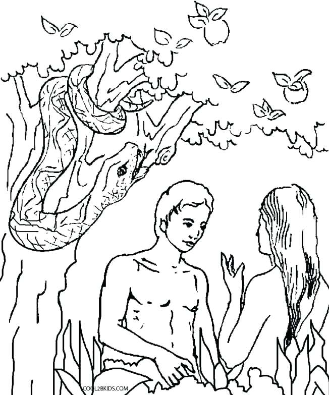 652x783 Classy Adam And Eve Coloring Page New Printable Pages For Kids