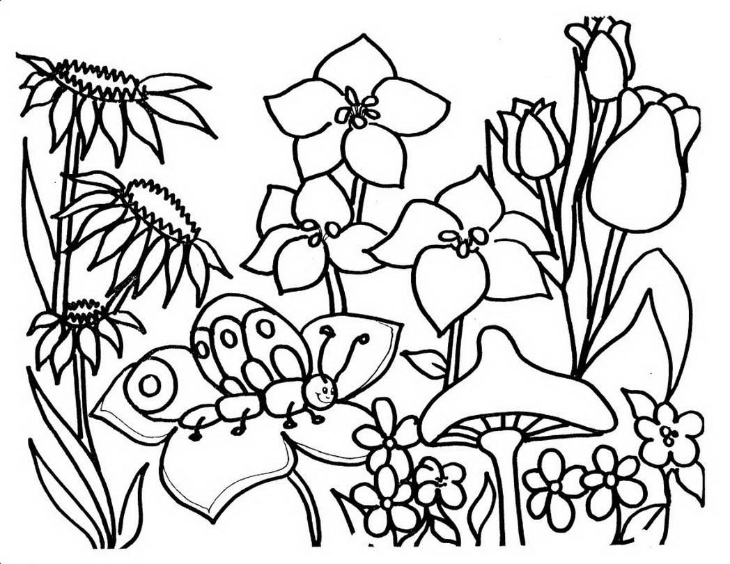 1048x810 Coloring Pages Of Garden Flowers Coloring Page Fun