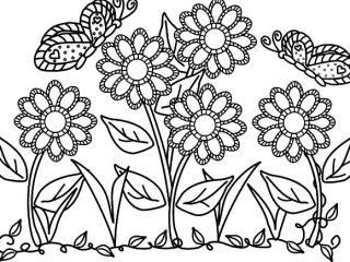 320x240 Garden Flowers Coloring Pages Butterfly With Flower In The Garden