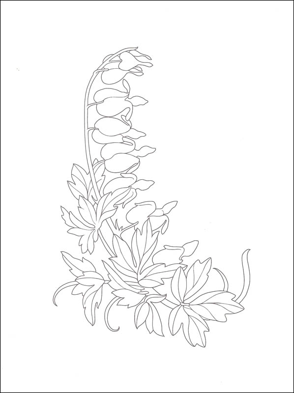 598x800 How To Draw Garden Flowers (Creative Haven How To Draw) (028593