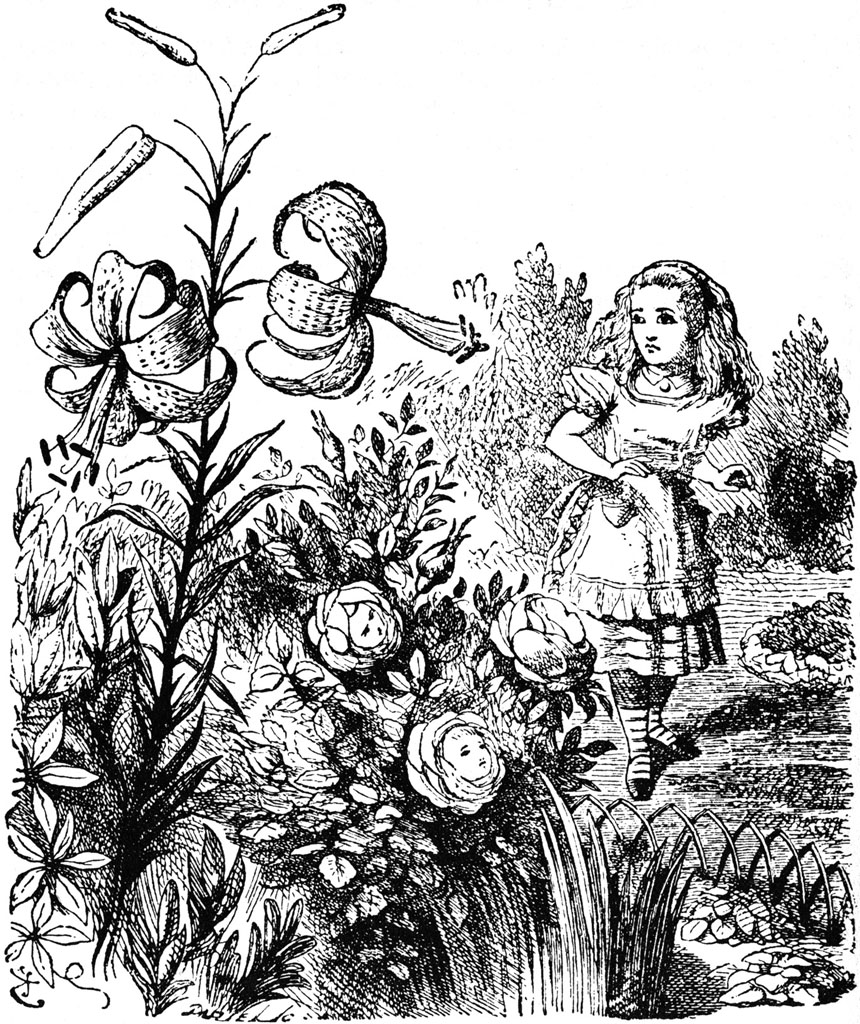 860x1024 Alice In The Garden Of Live Flowers Bugs In The News
