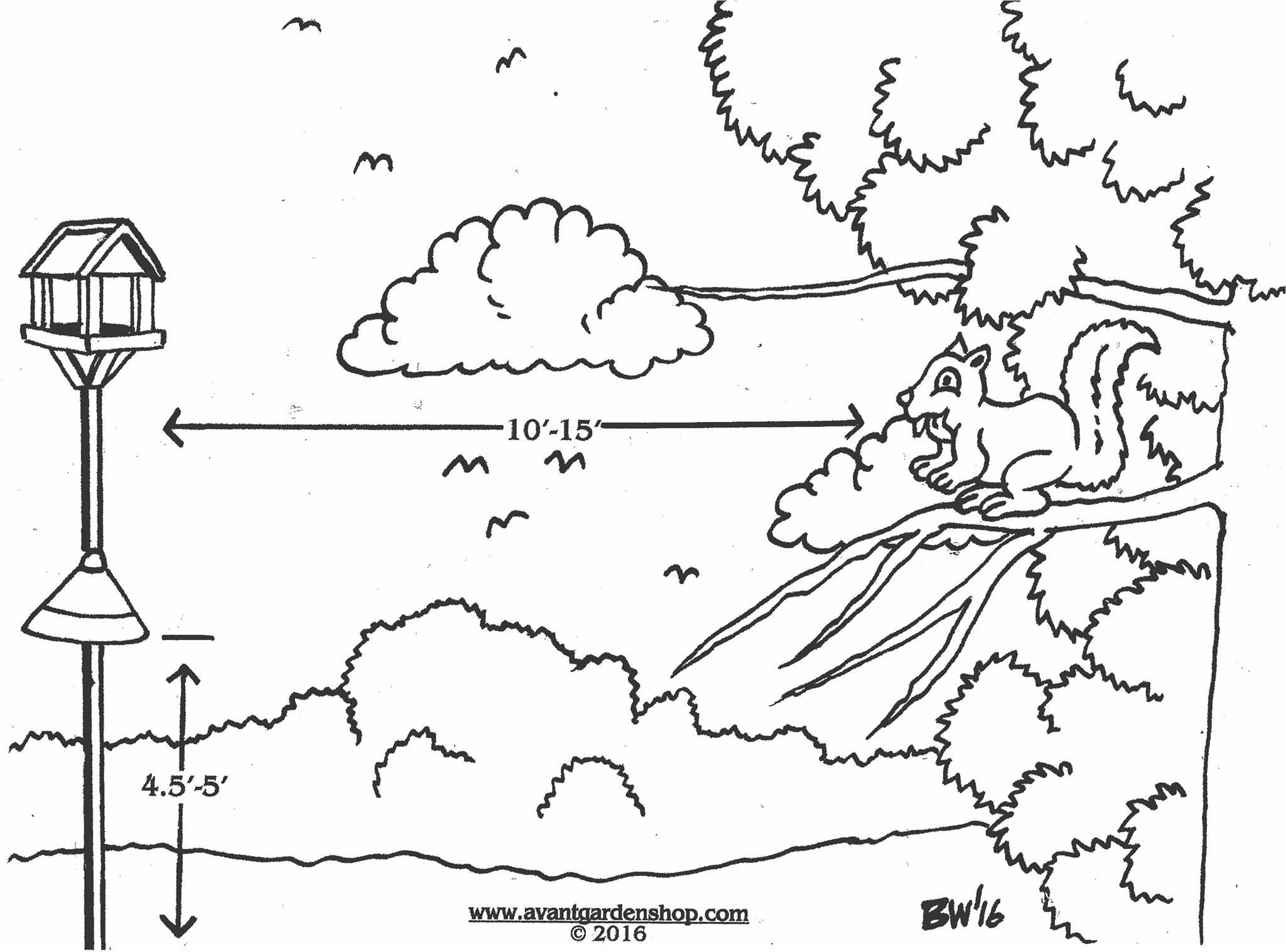 2048x1516 Garden Gate Episode 118 Setting Up A Bird Feeding Station (June