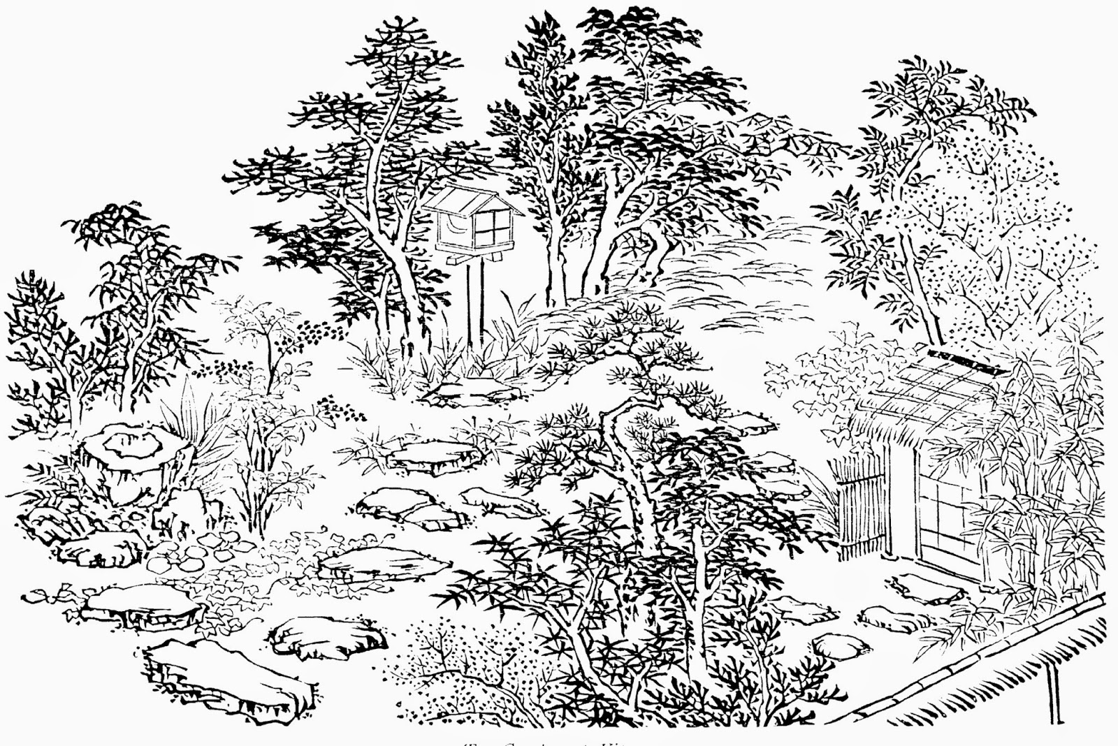 Line Drawing Garden : Garden line drawing at getdrawings free for personal