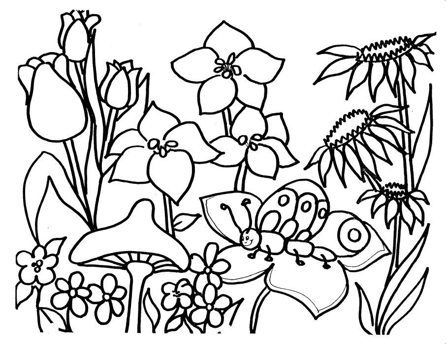 Garden Line Drawing At Getdrawings Com
