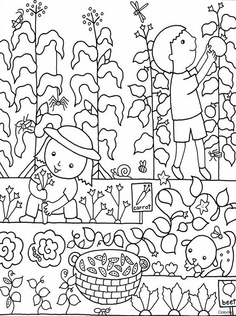 981x1312 Garden Coloring Pages Of Eden For Toddlers Diaiz