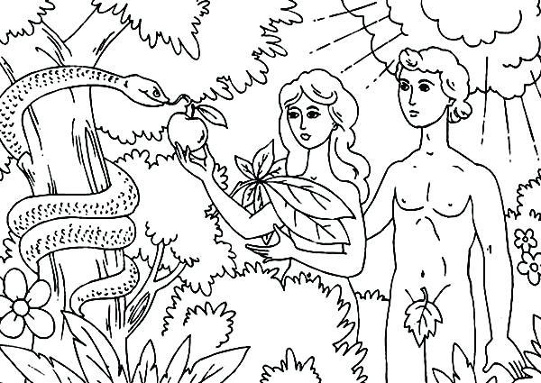 600x425 Garden Eden Coloring Pages Garden Line Drawing 4 Garden