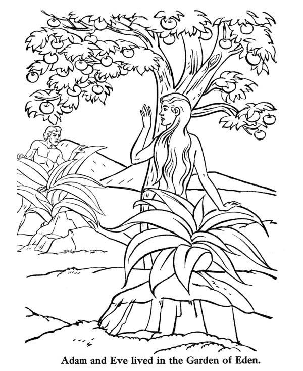 600x734 Adam And Eve Lived In The Garden Of Eden Coloring Page