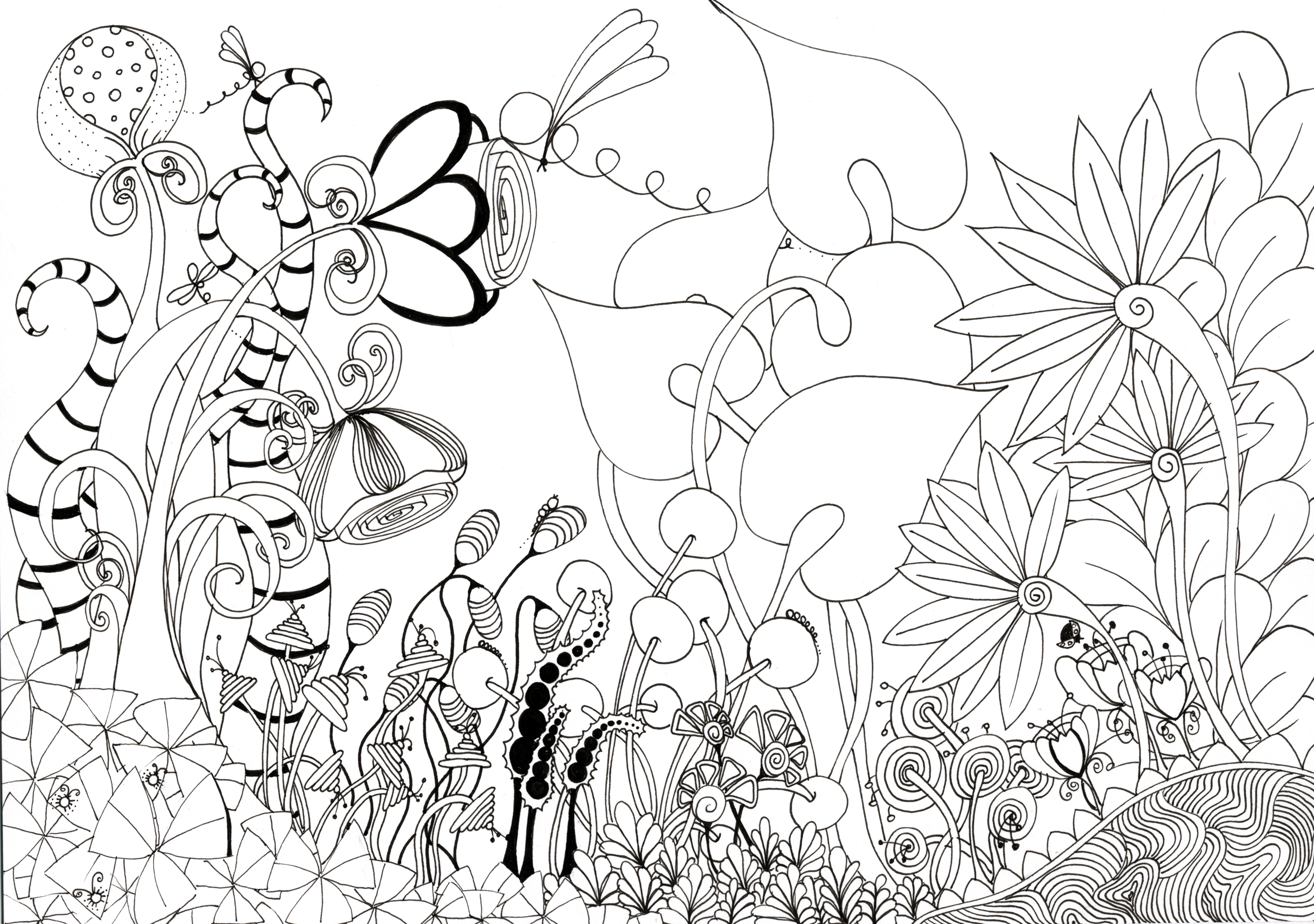 3543x2491 Pencil Drawing Flowers Garden Pic Best Flower Garden Drawing