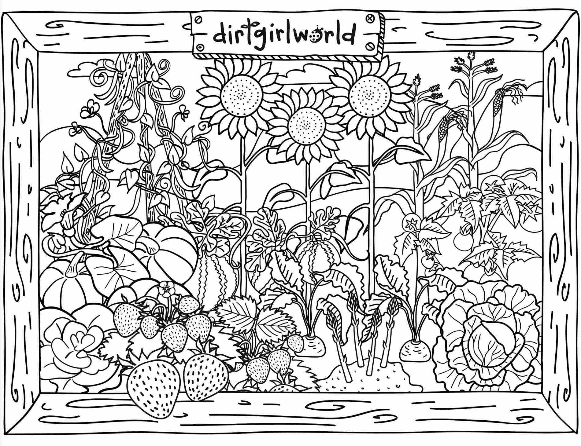 1900x1460 Vegetable Garden Drawing