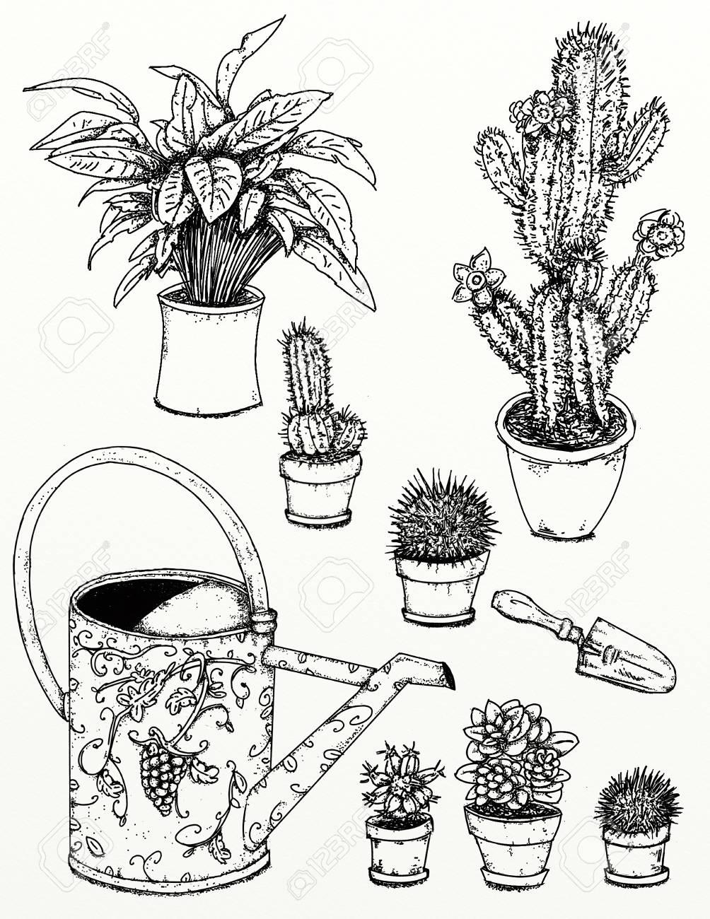 1004x1300 Realistic Designs To Garden And Garden Plants Garden Flowers
