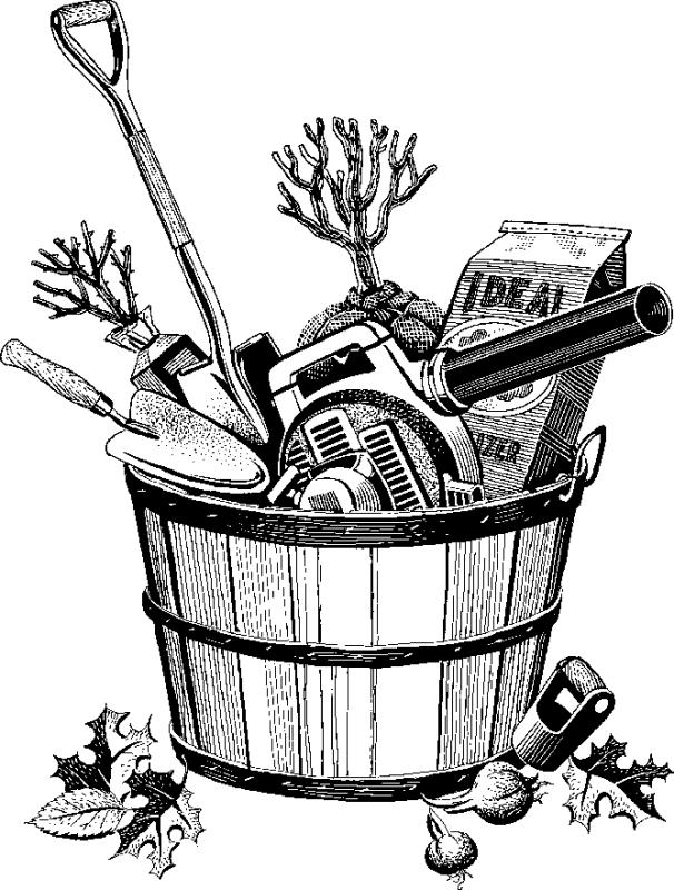 Gardening Tools Drawing at GetDrawings | Free download