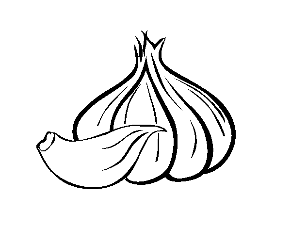 garlic drawing at getdrawings com free for personal use Vintage Vegetable Seed Packets Printable Vegetable Clip Art