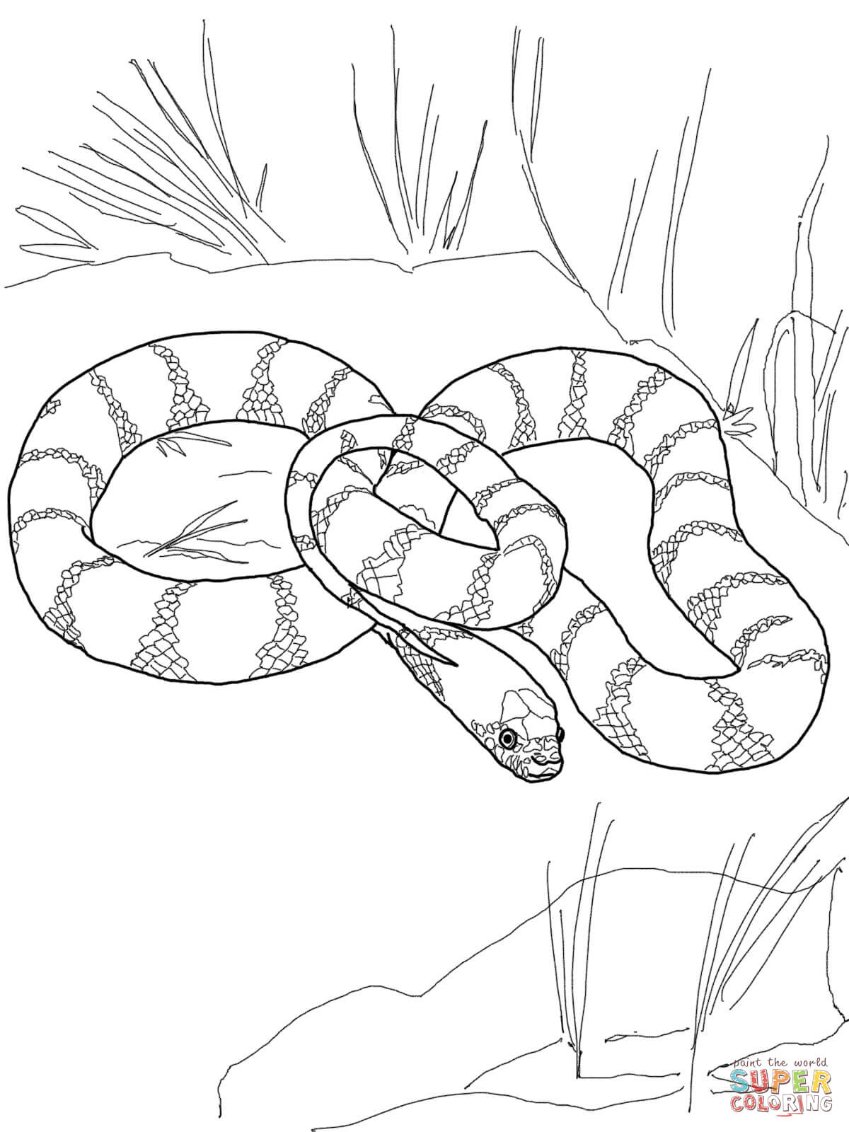 1200x1600 Plains Garter Snake Coloring Page Free Printable Pages