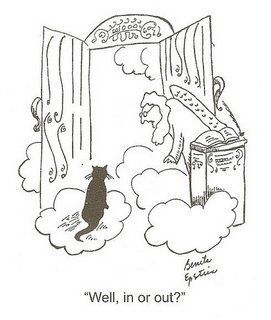 271x320 17 Best Pearly Gates Cartoons Images On Comic, Comic