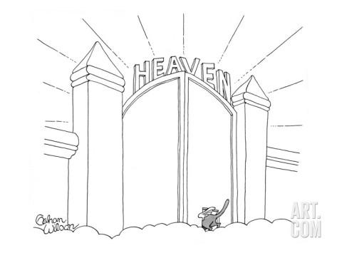 473x355 Cat Enters Heaven Through A Cat Door.