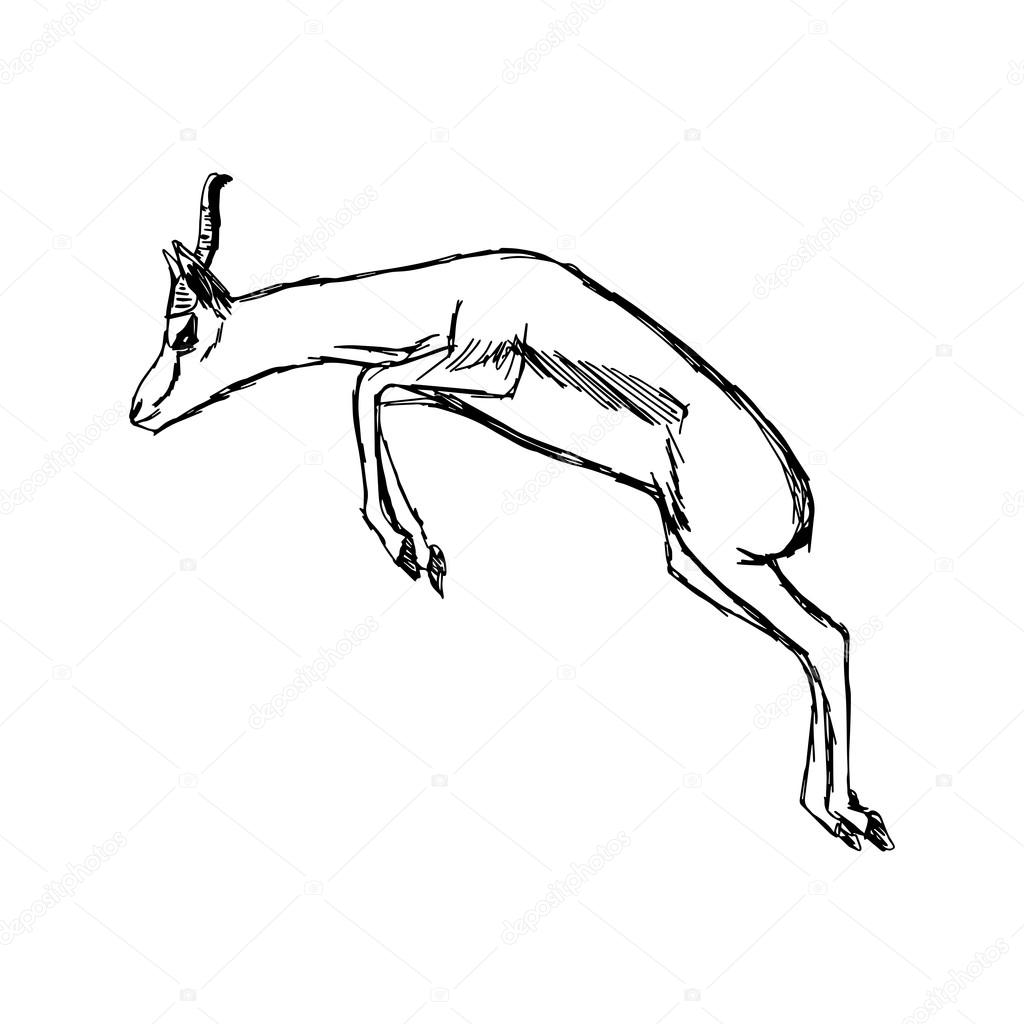 1024x1024 Illustration Vector Hand Draw Doodles Of Gazelle Jumping Stock
