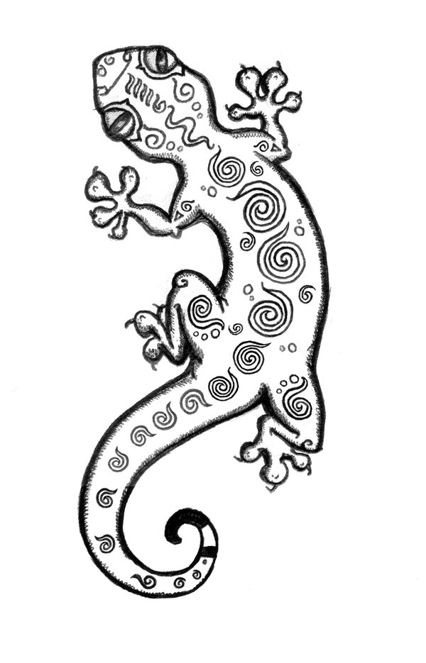 Gecko Drawing Template at GetDrawings | Free download