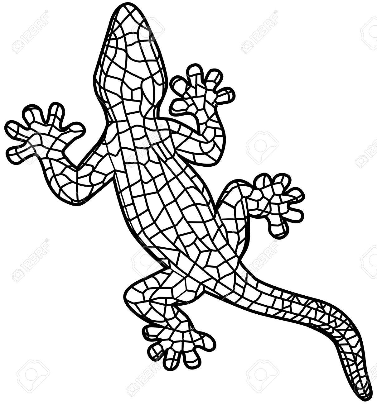 Gecko Drawing Template at GetDrawings.com   Free for personal use ...