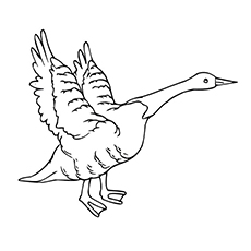 230x230 10 Printable Goose Coloring Pages For Toddlers