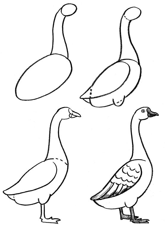 555x759 Inkspired Musings Duck, Duck, Goose!