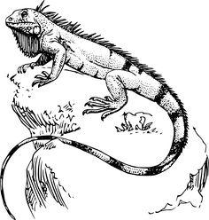 236x248 Lizard Tattoo Designs New Small Lizard Tattoo Design Amazing