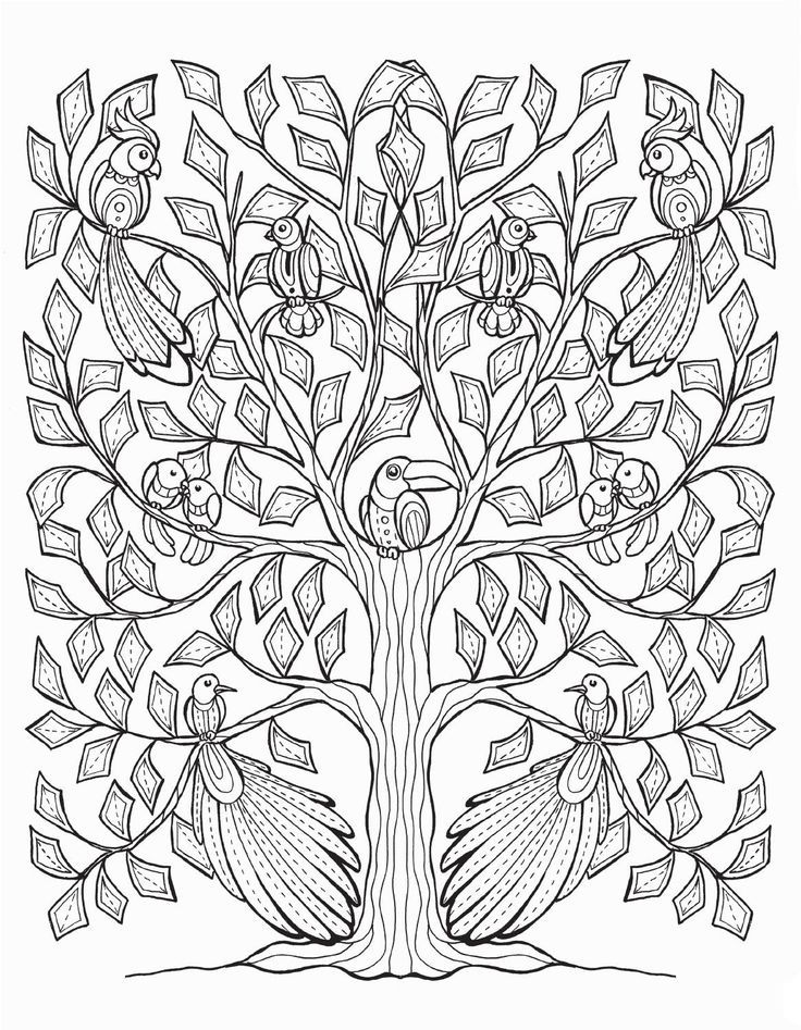 736x947 947 Best Adult Coloring Pages Animals Images On Pinterest