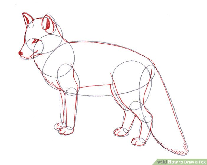 702x560 4 Ways To Draw A Fox
