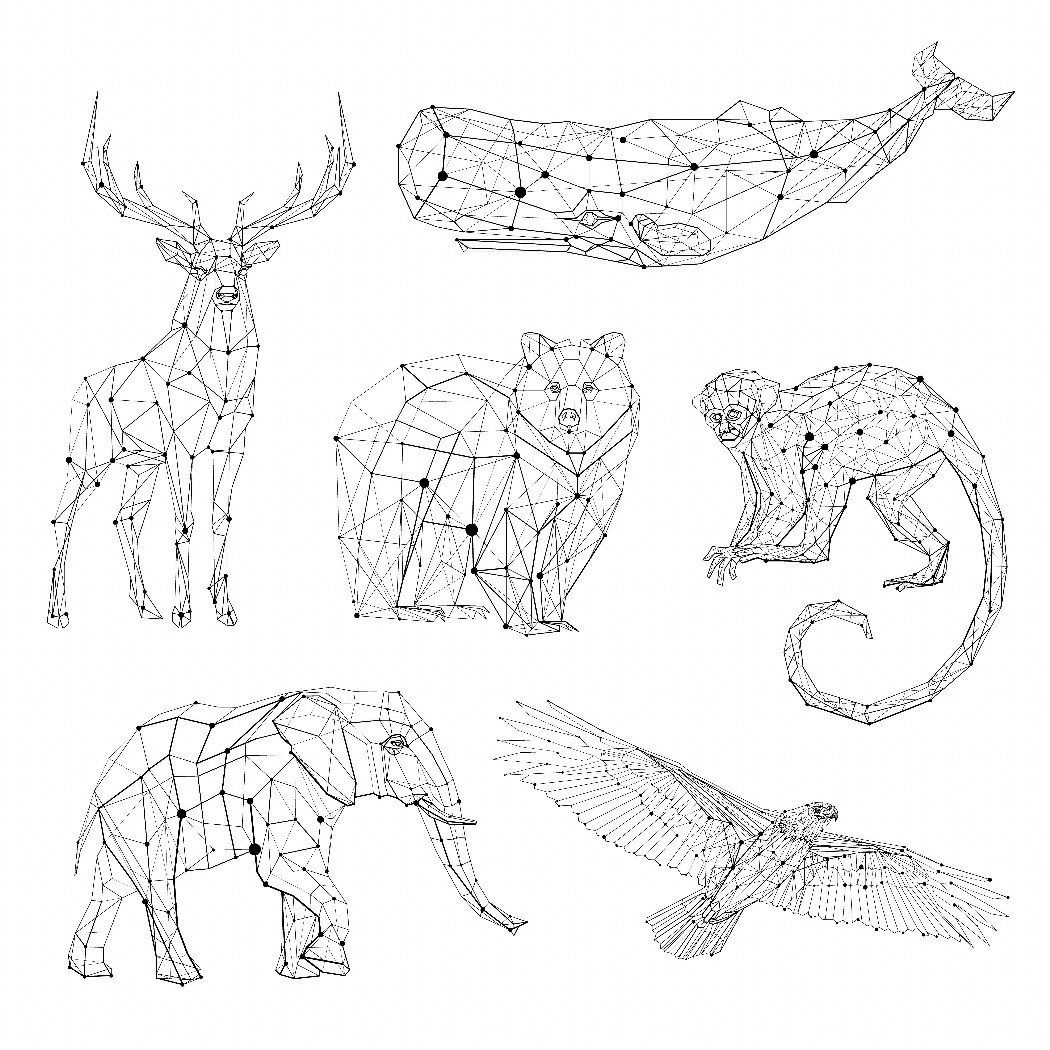 1050x1050 Image Result For Geometric Animals Motion Design Project