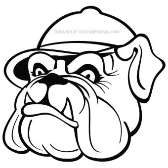 Georgia Bulldog Drawing