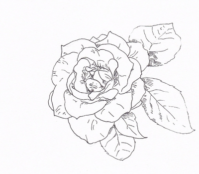 Georgia o keeffe coloring pages