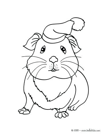 363x470 Gerbil Animal Coloring Pages Chinchilla Coloring Page Coloring