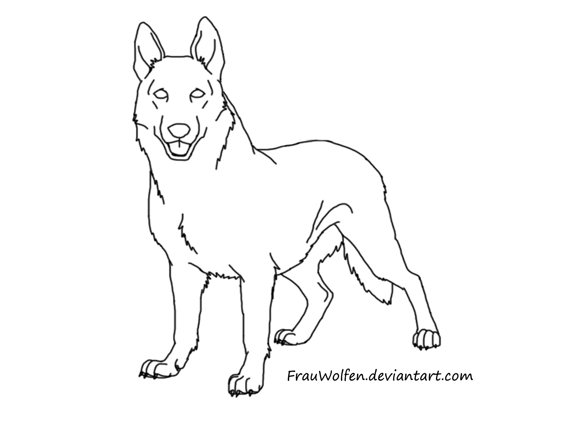 German Sheperd Drawing