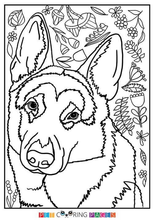 500x711 German Shepherd Dog Coloring Page