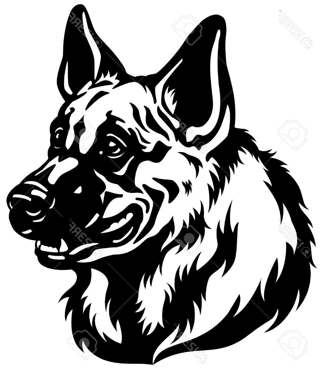 1131x1300 Hd German Shepherd Dog Head Black And White Illustration Stock
