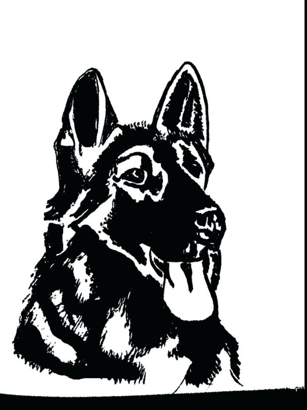 618x824 Shepherd By Realistic German Coloring Pages Puppy Printable Cute