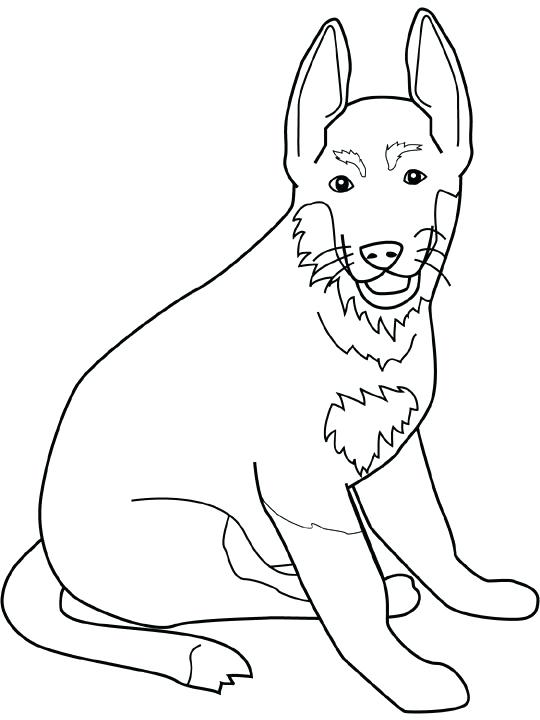 540x720 Excellent German Shepherd Coloring Page Free Download Dog Color