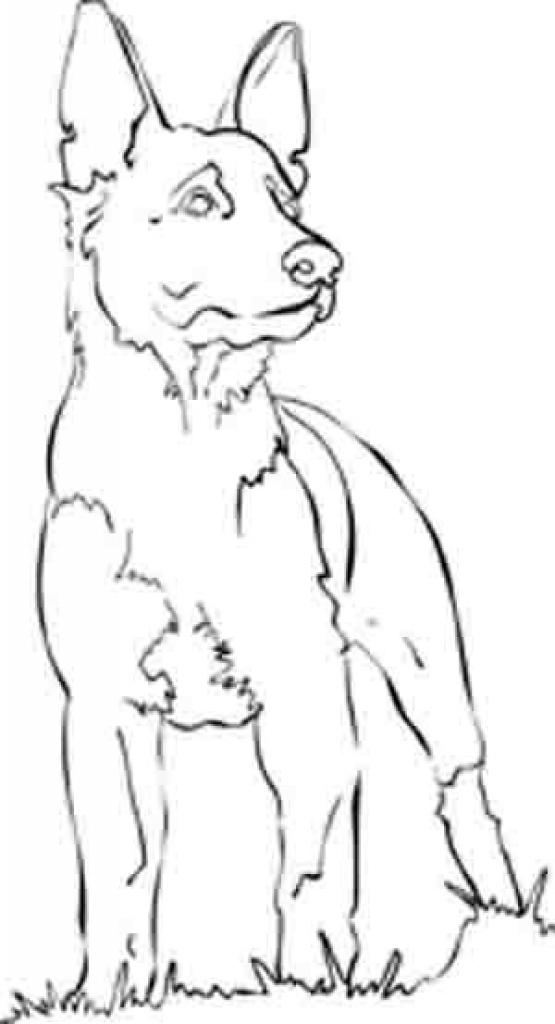 555x1024 German Shepherd Coloring Pages Printable